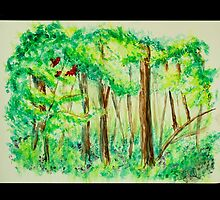 Emerald Forests by Emily Sasaki