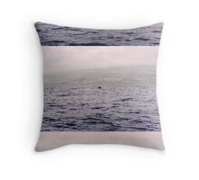 I saw the whales... far away.. but, I saw them.. Throw Pillow