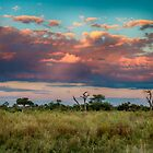 Sunset Beauty by Marylou Badeaux