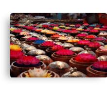 Colourful Wax Flower Trinkets Canvas Print