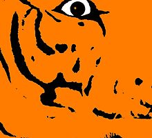 TIGER TIGER ... by SNAPPYDAVE