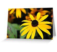 Balck Eye Susan Greeting Card