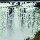 Iguazu Falls - From river level by photograham
