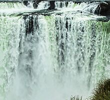 Iguazu Falls - From river level by photograham