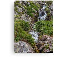 Waterfall in the mountains Canvas Print