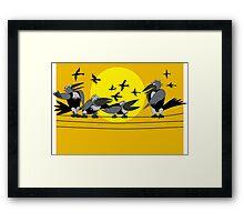 Funny birds Framed Print