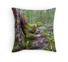 Gloucester Green Throw Pillow