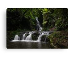 Elabana Falls... Canvas Print