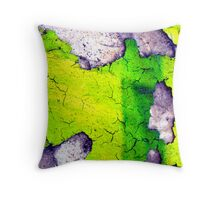 Wall 02 Throw Pillow