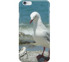 Nosey Seagull at Mangawhai surf beach iPhone Case/Skin