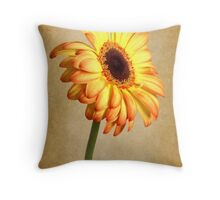 Painted Flames Throw Pillow
