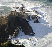 Cape byron, the first by Jadedragon