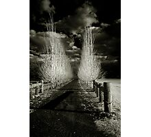 The Infrared Lane Photographic Print