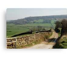 A View near Danby Castle Canvas Print