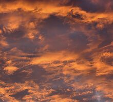 Morning Sky Nature Photograph by SmilinEyes