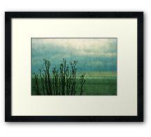 Beyond the shore Framed Print