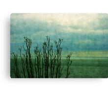 Beyond the shore Canvas Print