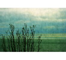Beyond the shore Photographic Print