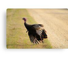 turkey time Metal Print
