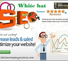 Tips to Select Best White hat SEO Company by robertlee