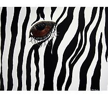 Eye Spy 2 Photographic Print