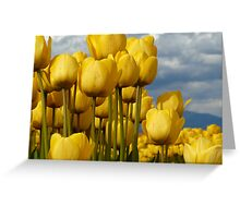 Yellow wonders Greeting Card