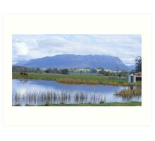 Mt Roland from Sheffield's town border Art Print