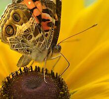 Lady on Yellow by Lisa G. Putman