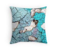 Wall 11 Throw Pillow