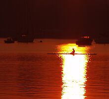 Rowing to the Sun by Steve Keefer
