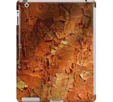 Paperbark Maple iPad Case/Skin