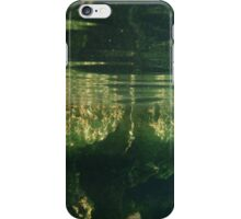 Above And Below Water iPhone Case/Skin