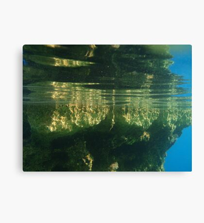 Above And Below Water Canvas Print