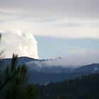 Mountain Veiw by neonrose77