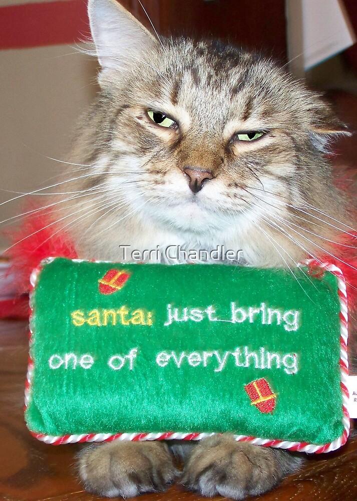 Dear Santa by Terri Chandler