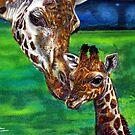 Giraffes by Anthony Middleton