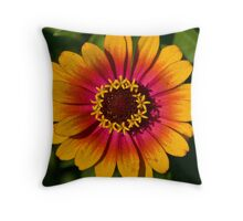 Radiance 2 Throw Pillow