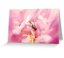 Pink beefly Greeting Card