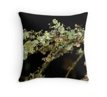 Fir Tree Lichen Throw Pillow