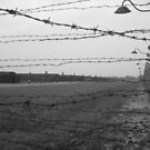 Auschwitz Birkenau by justineb