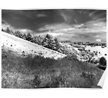The black and white valley Poster