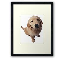 Puppy! Framed Print