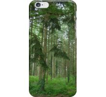 Chenerailles Woods iPhone Case/Skin