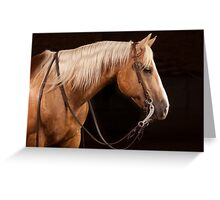 Palomino Quarter Horse at DSR Ranch Greeting Card