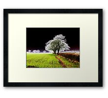 Why cant I be different..! Framed Print