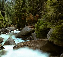 Downstream  by Varinia   - Globalphotos