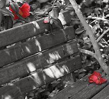 Bud, Bloom . . . Bye by OzShell