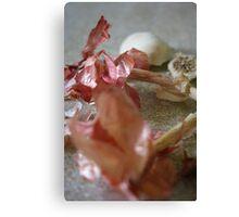 Garlic Scape Canvas Print