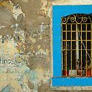 Window, Barcelona, Spain by fauselr