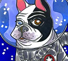 space cadet by shannon hedges